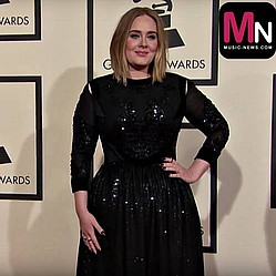 Adele haults gig to stop fan filming